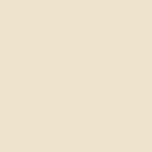 UNICOLOR BEIGE MATE 9,8x9,8