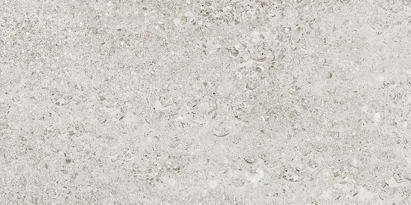 SHELL WHITE RECT. 29,7x59,7