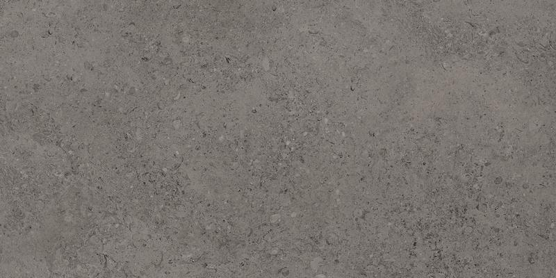 SHELL DARK GREY RECT. 60x120