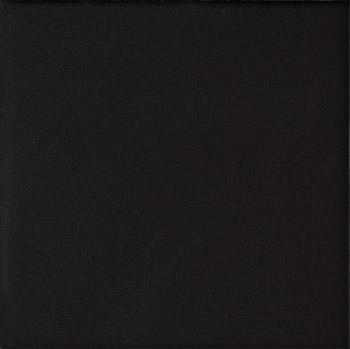 COLORLINE BLACK MATT 10X10